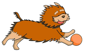 Hunde-und-Welpen.de